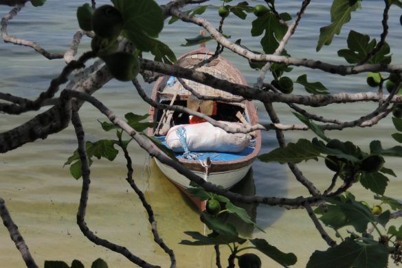 minicamping Selene aan het Bafa meer