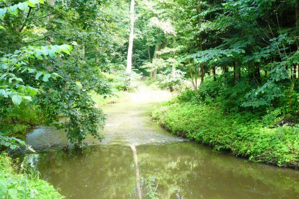 beek op minicamping in Tsjechie