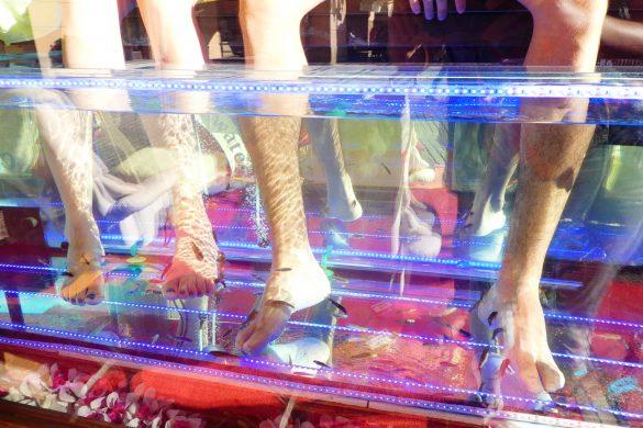 voetverzorging door visjes