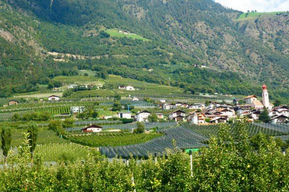 uitzicht fietsen langs de Adige