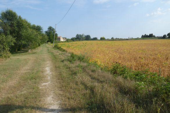 uitzicht vanaf Agricampeggio Alba